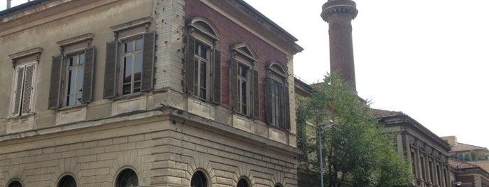 """Museo di Antropologia Criminale """"Cesare Lombroso"""" is one of ZeroGuide • Torino."""