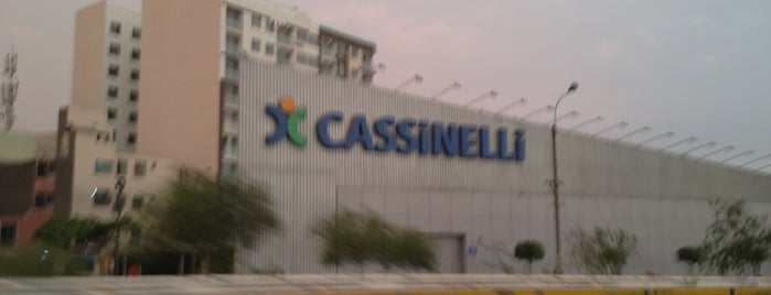 Cassinelli is one of CASSINELLI.