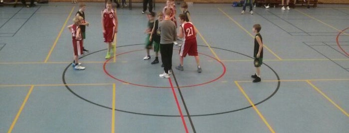 Sporthal Het Vledder is one of Sporthallen NBB Promotiedivisie 2011/2012.