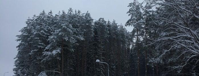 Городок is one of Города Беларуси.