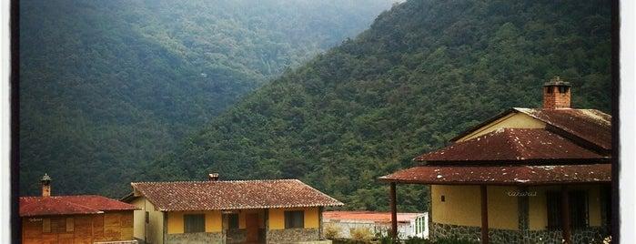 Hotel Santo Domingo is one of Hoteles.