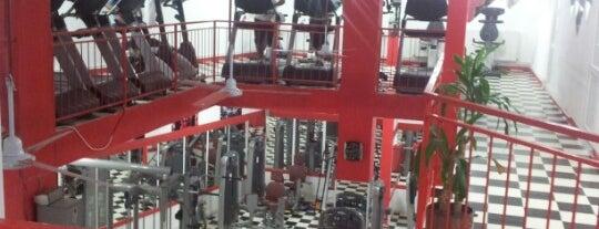 Fitstop Fitness Center is one of Millicent'in Kaydettiği Mekanlar.