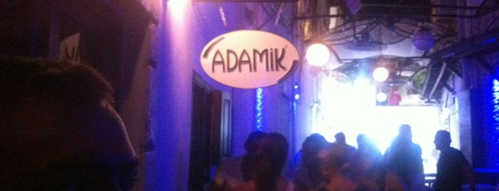 Adamik is one of yas's choice.