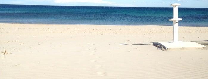 Playa Las Higuericas is one of Playas.