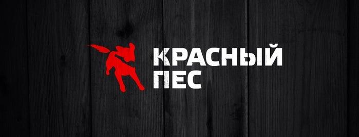 Красный Пес is one of Кафе, бары, рестораны....