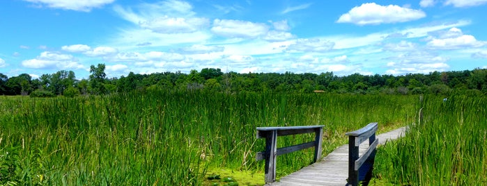 Moraine Hills State Park is one of Illinois: State and National Parks.