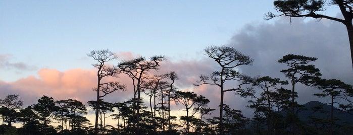 อุทยานแห่งชาติภูสอยดาว is one of ลำพูน, ลำปาง, แพร่, น่าน, อุตรดิตถ์.