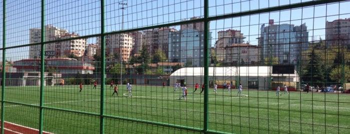 Beşiktaş Çilekli Tesisleri is one of İstanbul Avrupa Yakası #2 🍁🍃.