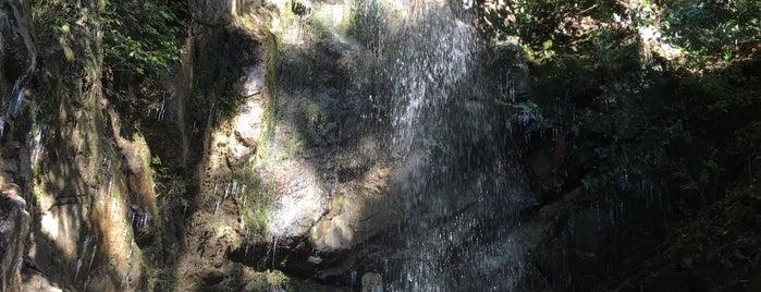 桃尾の滝 is one of お気に入り.