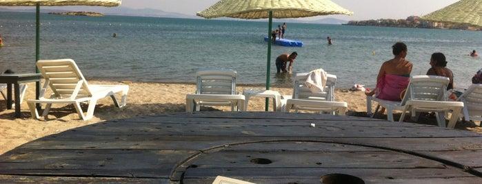 Dandik Beach is one of İzmir.