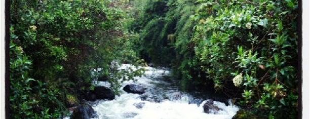 Papallacta is one of Ecuador best spots.