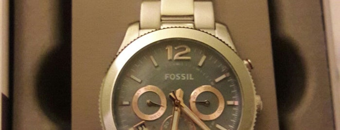 FOSSIL is one of Hannover.