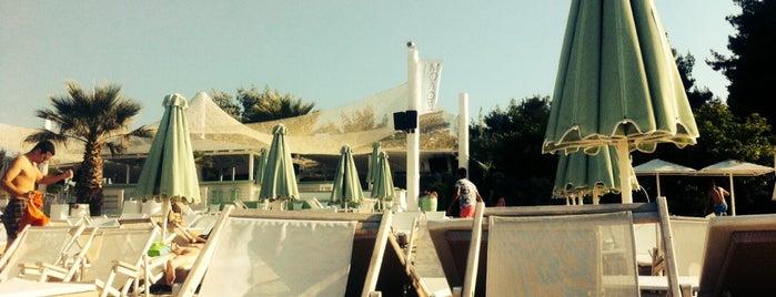 Μόλος on the Beach is one of Off to Chalkidiki ♥ (drinks 'n' food).