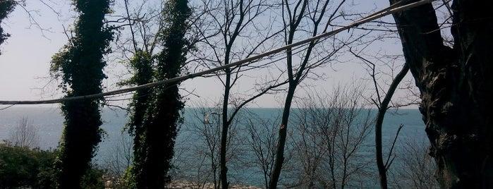 Kadıköy Moda Sahil Parkı is one of İstanbul'daki Park, Bahçe ve Korular.