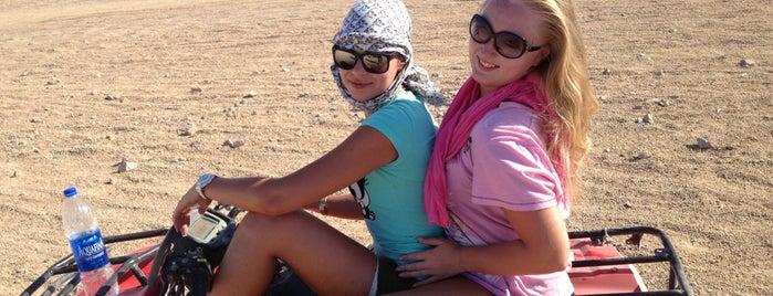 Sinai Desert Buggy Safari is one of Be Charmed @ Sharm El Sheikh.