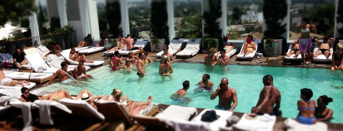 The Pool at Mondrian Hotel is one of Best Los Angeles Pool Parties.
