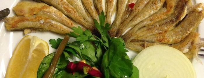 Fevzi Hoca Balık Restaurant is one of Cafe-restorant-bistro.