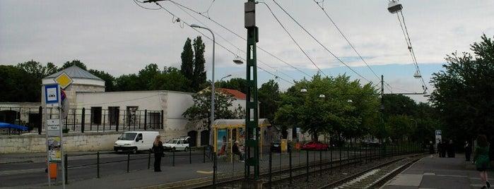 Farkasréti temető (59, 59A) is one of Budai villamosmegállók.
