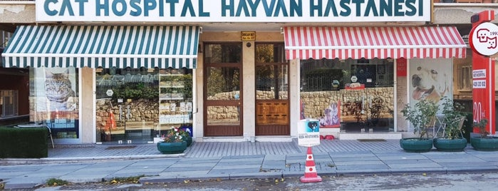 Cat Hospital Kedi Hastanesi is one of Veteriner muayenehaneleri.