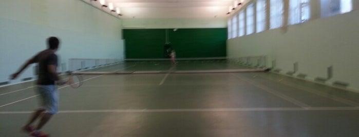 Теннис на работе is one of Мои места.