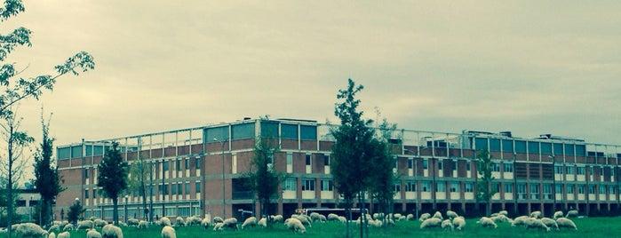 Dipartimento di Scienze Farmaceutiche is one of UniFi.