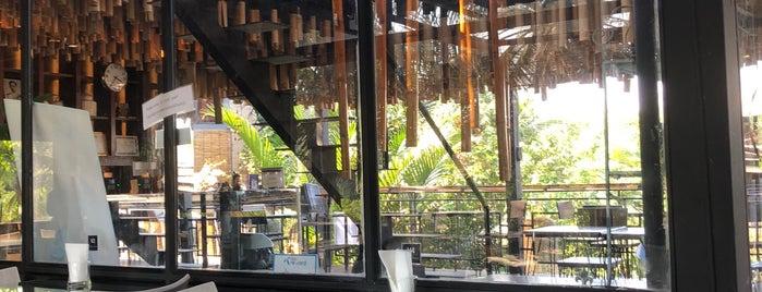 Bangkok Tree House is one of Getaway   Hotel.
