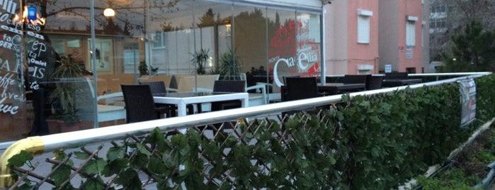 Cafellia Cafe is one of Buluşma Noktalarımız :).