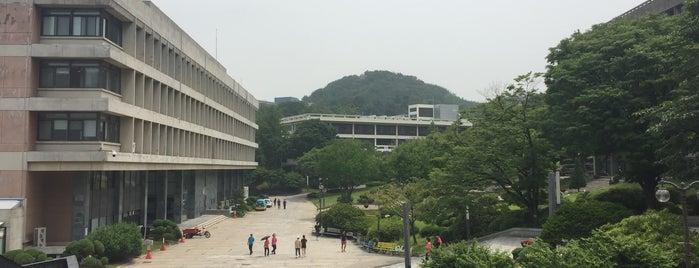 서울대학교 아크로광장 is one of Seoul Natl Univ.