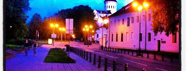 Vilnius is one of Capitals of Europe.