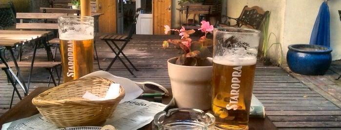 Indigo is one of prazsky bary / bars in prague.