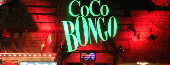 Coco Bongo is one of Playa del Carmen Cancún.
