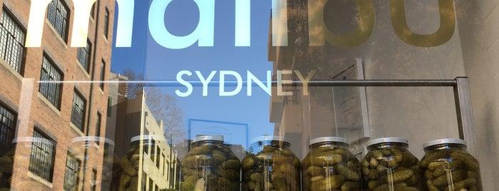 Malibu is one of Sydney.