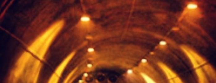 Bolu Dağı Tüneli is one of gezginkizin listesi.