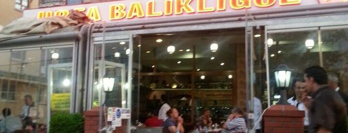 Urfa Balıklıgöl is one of Cafe-restorant-bistro.