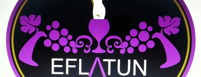 Eflatun Meyhane is one of Orhan.