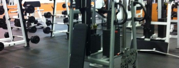 Powerflex Gym is one of DEUCE44 III.
