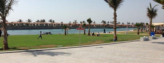 Jeddah North Corniche is one of Jeddah.