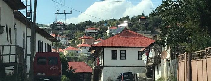Yeşilce is one of Ordu.