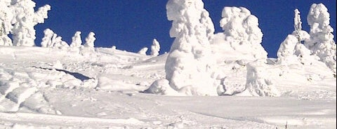 Top of Symphony Express Chair is one of Skigebiete.