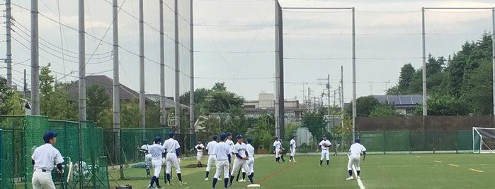 東京都立 大泉高等学校 is one of 都立学校.