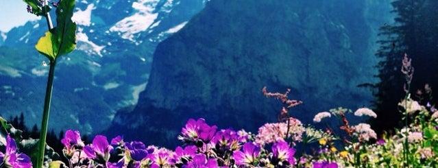 スイス is one of themaraton.