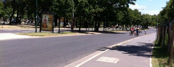 Corredor Dardo Rocha - Paseo de Bicicletas is one of AL AIRE LIBRE!.