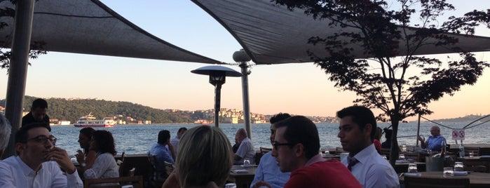 Zuma is one of Istanbul - Turkey - Peter's Fav's.