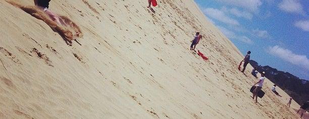 Te Paki Sand Dunes is one of NZ to go.