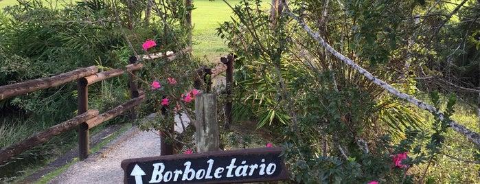 Borboletário Águias da Serra is one of SP - lugares.