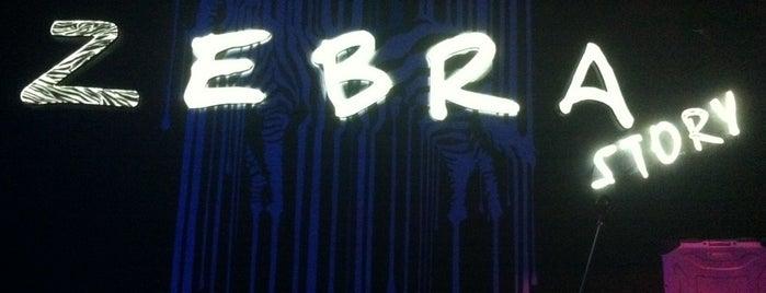 Zebra Story Club is one of Спортивные клубы.