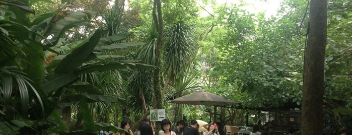 Canopy Garden Dining & Bar is one of 54 Dog-friendly eateries in Singapore.