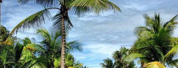 The St. Regis Bahia Beach Resort Puerto Rico is one of Caribbean.