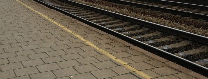 Station Lier is one of Bijna alle treinstations in Vlaanderen.