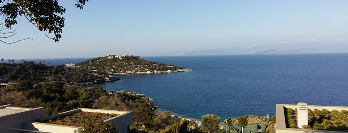Blue Beach Club & Bar is one of Bodrum !!.
